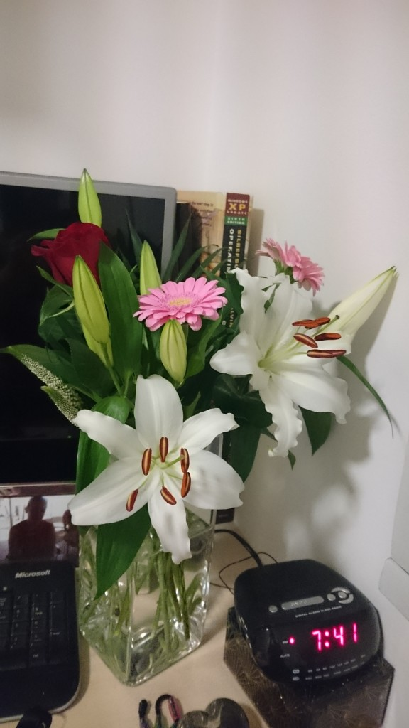 The beautiful flowers my boyfriend got me for Valentine's Day!